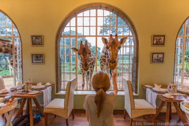 Ναϊρόμπι-Girrafe Manor