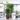 Το μπαλκόνι της Κατερίνας και προτάσεις για φυτά και έπιπλα